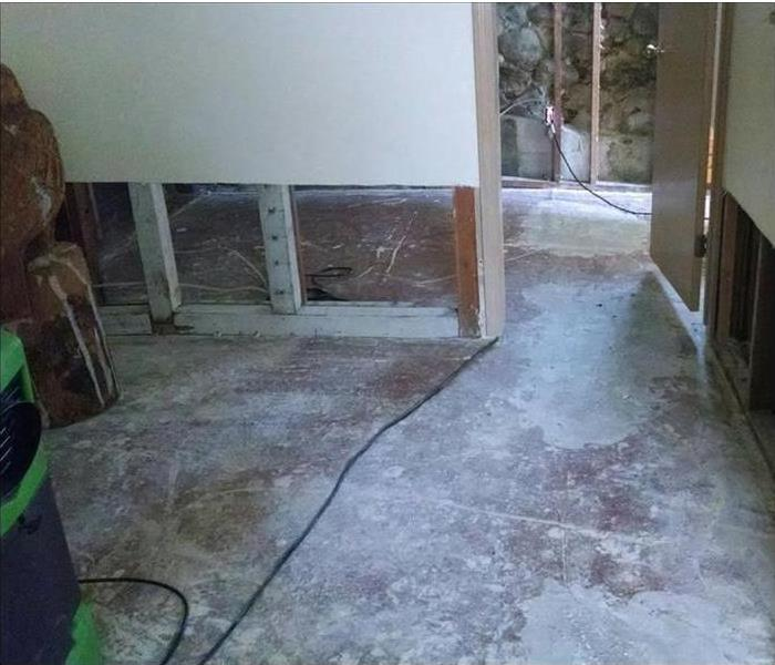 Montgomery Neglected House and a Mold Infestation After