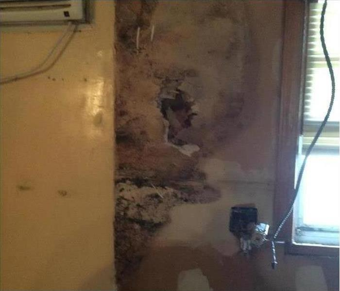 Mold Damage – Montgomery Home Before