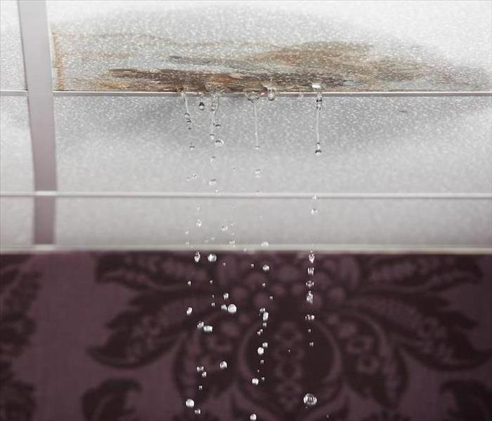 Leaky Roof Water Damage: Water Damage From A Leaking Roof In Your Ridgefield Home
