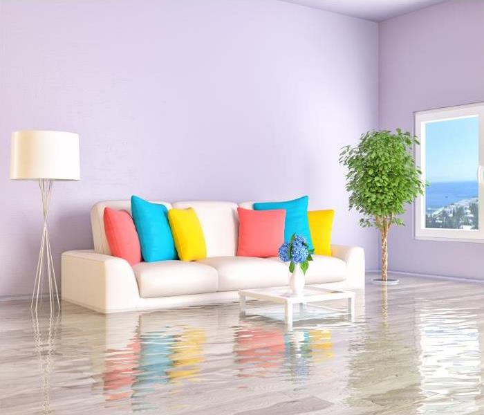 Water Damage Proper Understanding Of Psychrometry Is Necessary During Water Removal In Montgomery